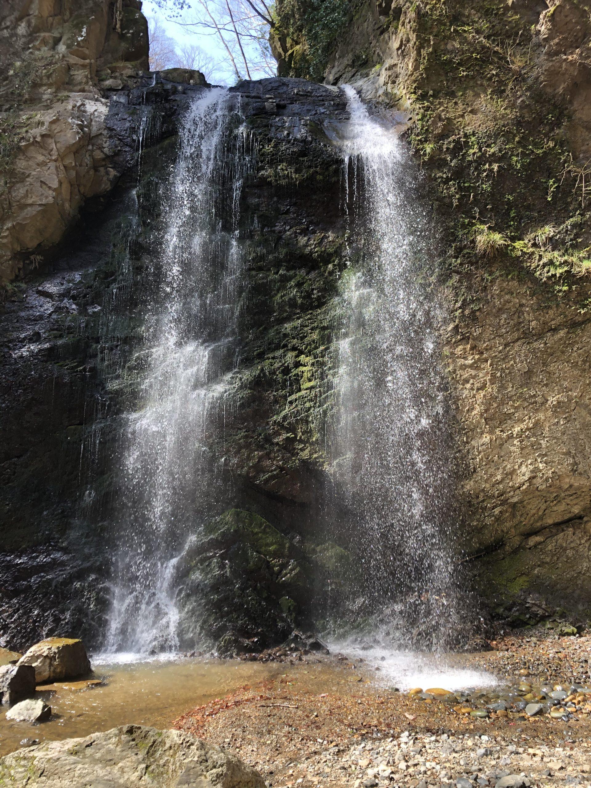 滝の投稿写真
