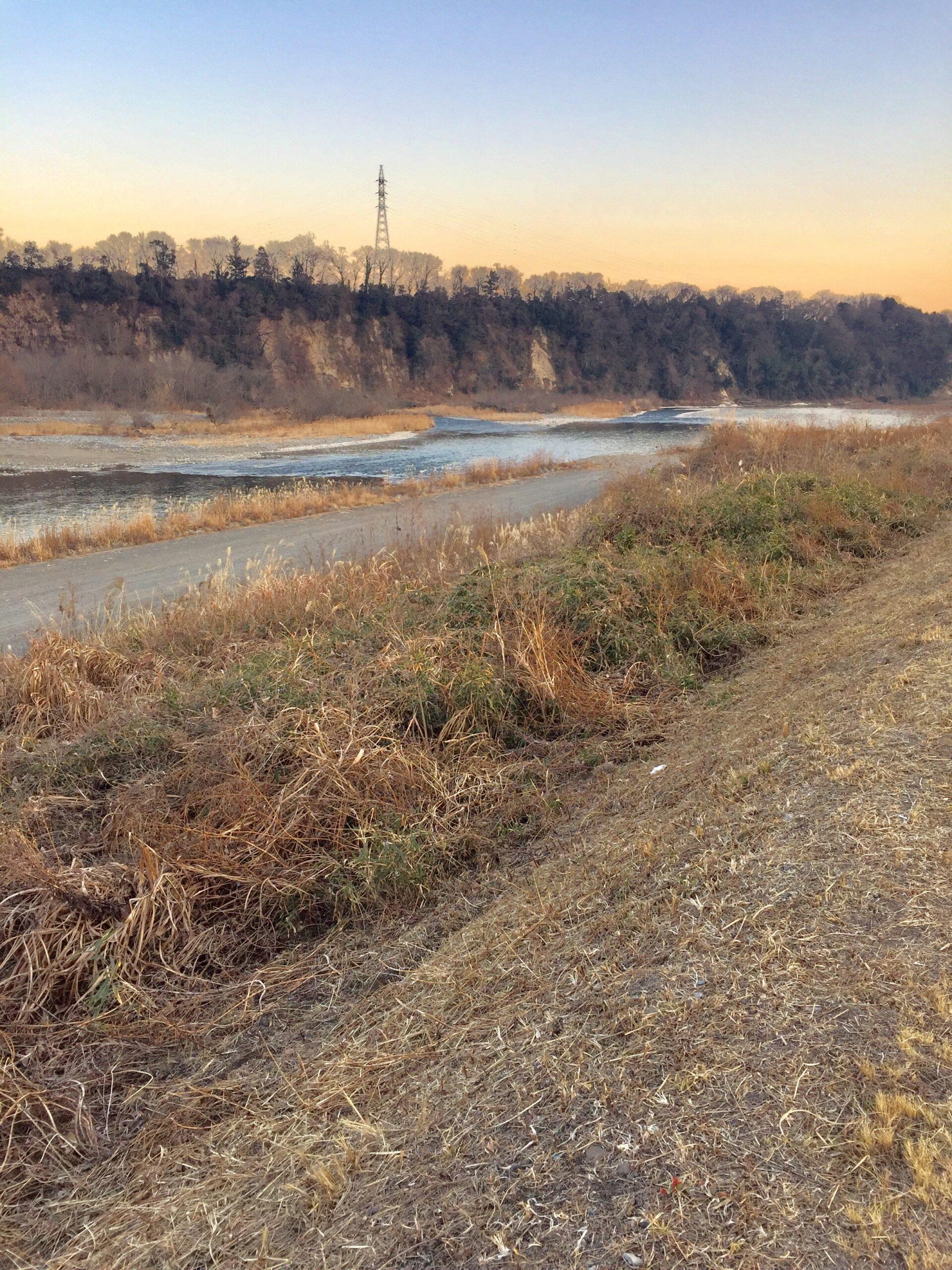冬の相模川の投稿写真