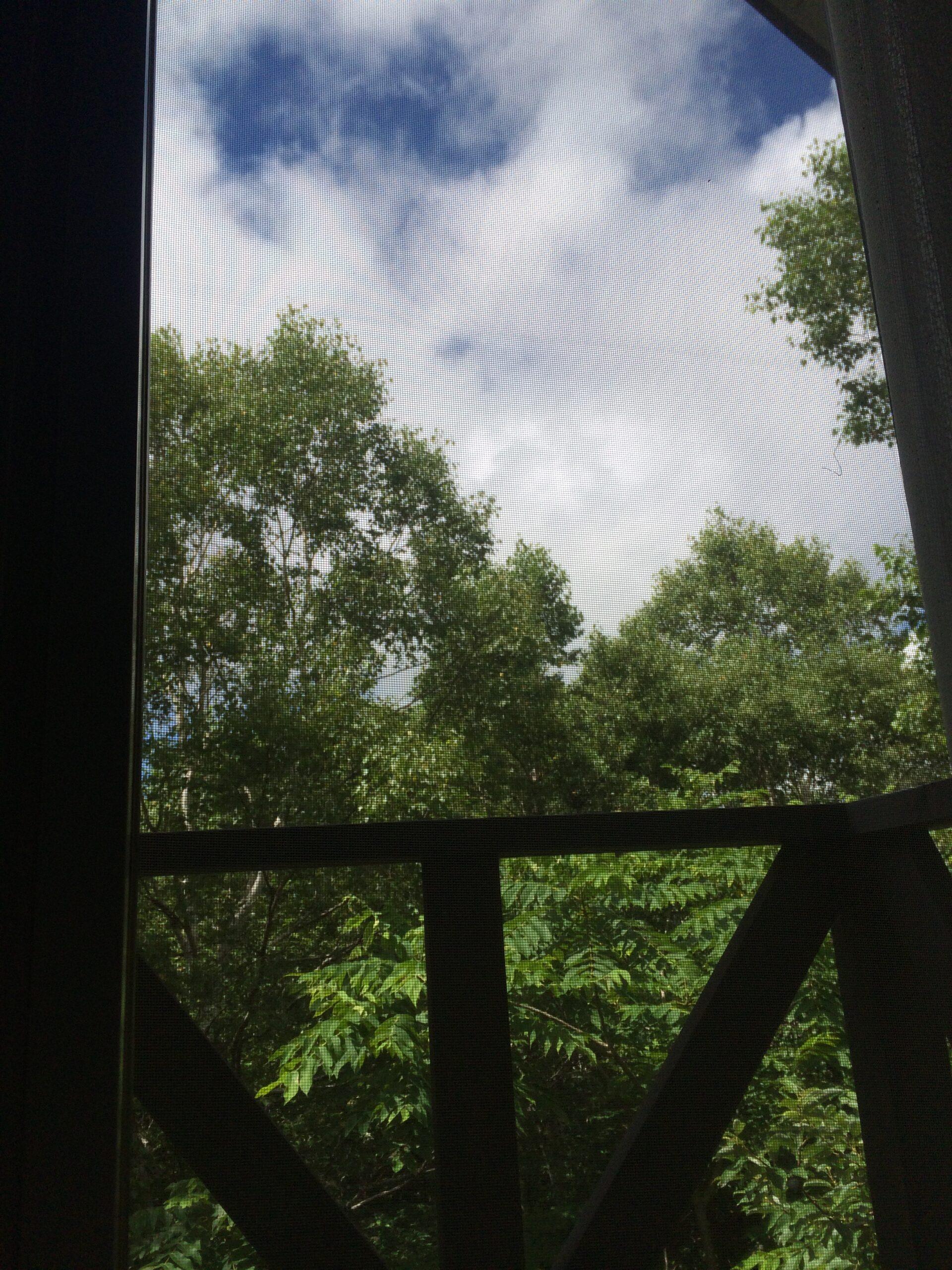 夏っぽくなってきた♪の投稿写真