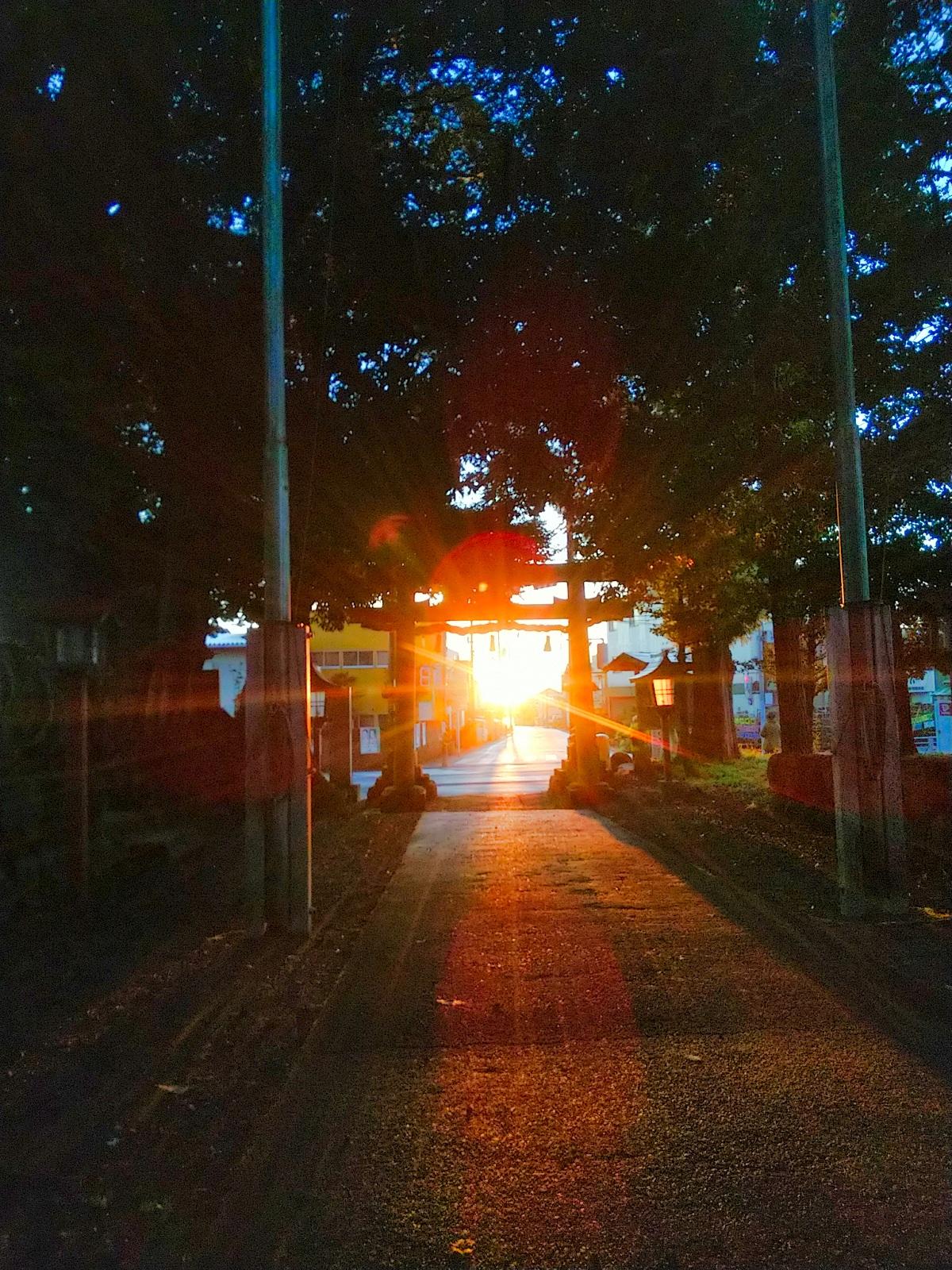霜降りの日に参道から日が昇るの投稿写真